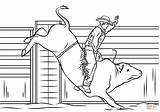 Bull Coloring Riding Cowboy Pages Printable Rodeo Horse Drawing Riders Colouring Drawings Sheets Supercoloring Patterns Sketch Adult Colorings Paper Puzzle sketch template