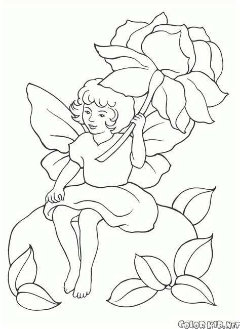 coloring page fairy   flower