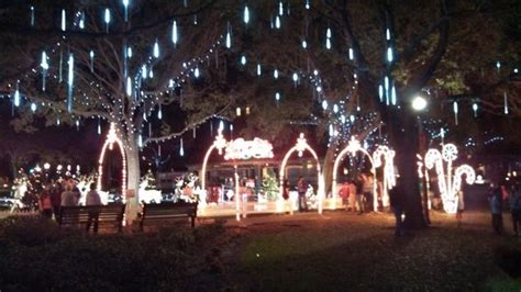 christmas lights st petersburg fl christmas lights in park picture of the vinoy