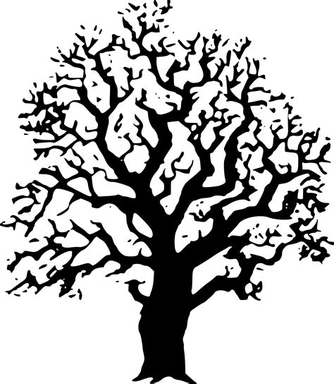 oak tree clipart black and white clipart oak tree