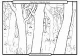 Bear Going Hunt Coloring Cave Colouring Template Were Sheets Templates Searches Recent sketch template