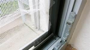 Klebereste Entfernen Fenster : fliegennetz klebereste mit verd nner entfernen frag mutti ~ Watch28wear.com Haus und Dekorationen
