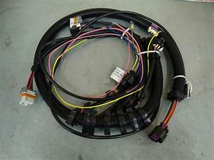 Msd 6010 Wiring Harness - Ls1tech