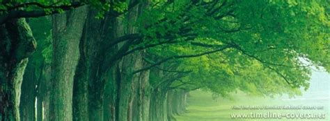 nature facebook covers timeline coversnet