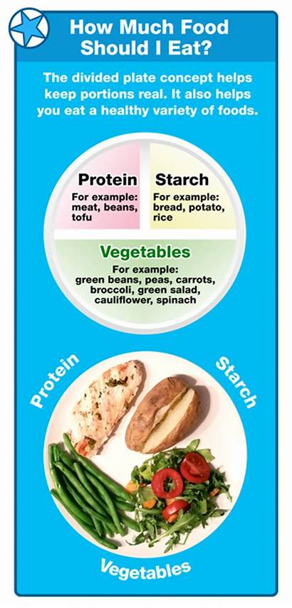 Eat Should Much Meal Each Plate Portion