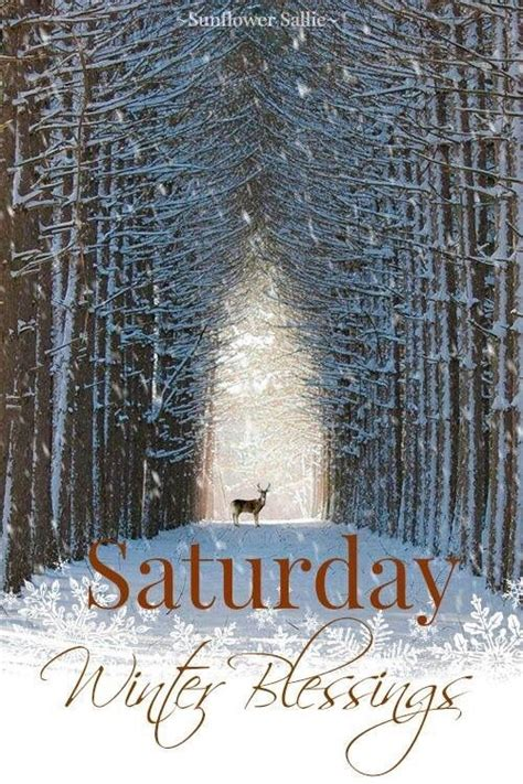 saturday winter blessings pictures   images