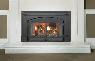Natural Fireplace Insert napoleon gi3600 natural vent gas fireplace insert gi3600