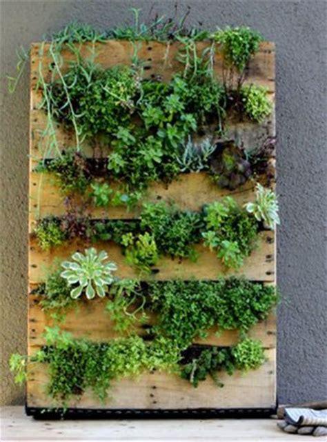 mur vegetal exterieur palette sofag