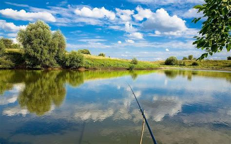 Because i know, you will not be able to download all wallpapers one by all pictures are in hd. Fishing Wallpapers - Wallpaper Cave