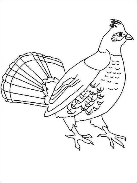 Kleurplaat Hupie by раскраска птицы детские раскраски распечатать скачать