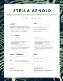 Resume Ideas by 80 Best Resume Ideas Images On Professional