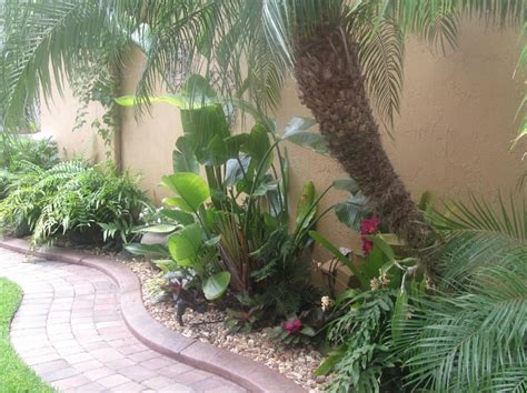 florida tropical landscaping ideas tropical florida front walkway home pinterest