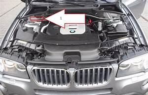 Bmw Vin Number  How To Spot A Genuine M Series Bmw  Bmw