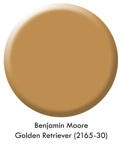 paint color golden retriever that elusive paint color designers faves