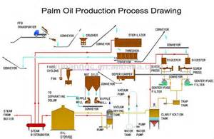 Oil Palm Or Palm Oil