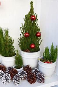 Advent Deko Für Draußen : meine erste weihnachtsdeko und deko tipps f r euch deko mit naturmaterialien pinterest ~ Orissabook.com Haus und Dekorationen