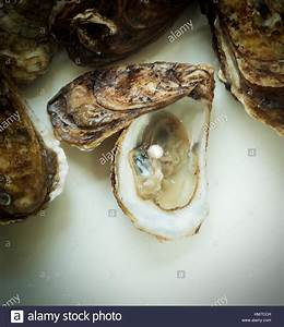 Pearl inside oyster shell Stock Photo, Royalty Free Image ...