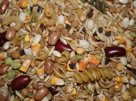 baan cuisine l 39 avian bean cuisine plus