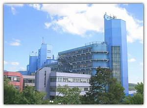 Bremen De Schwarzes : schwarzes brett bremen bekanntschaften generatedlittles cf ~ Markanthonyermac.com Haus und Dekorationen