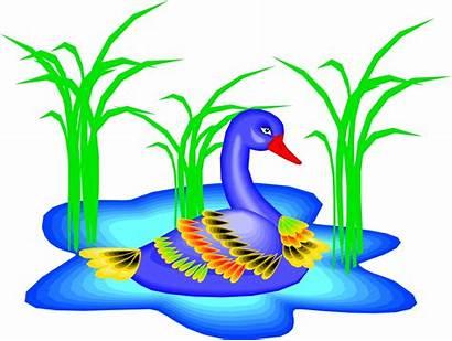 Cartoon Ducks Pond Clipart Clip Transparent Library