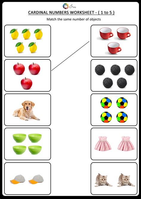 printable cardinal numbers english worksheets