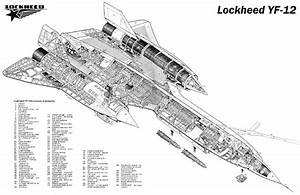 Lockheed Yf 12 Sr 71 Aircraft Cutaway Poster Print 24x36 Hi Res