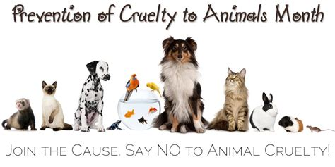 prevention  cruelty  animals month