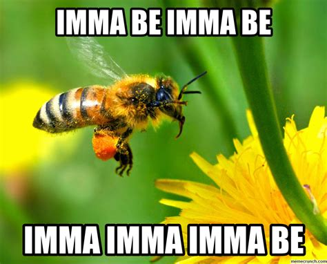 Bee Memes - bee meme 28 images funny bee memes of 2017 on sizzle threes bee meme pictures to pin on