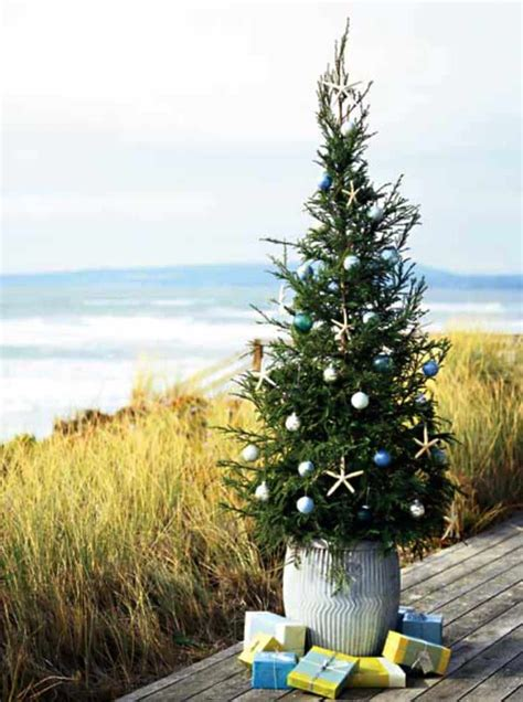 brilliant coastal chic christmas tree decorating ideas
