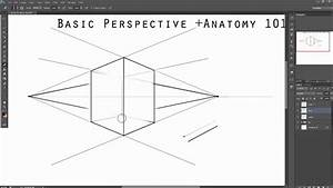 Perspective Anatomy Guide Voice Over Tutorial