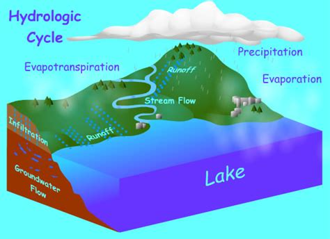 Water Cycle Images Hydrologic Cycle Animation Www Pixshark Images