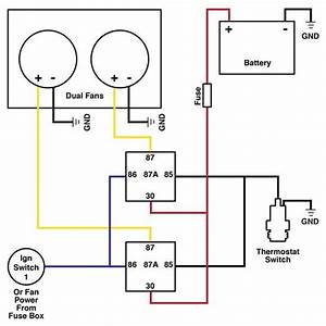 Dual Cooling Fan Wiring Diagram