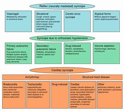 Syncope Pathophysiology Classification Svg Class Cardiology Textbook