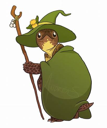 Drawings Animal Reptiles Wizard Witch Fantasy Lizard