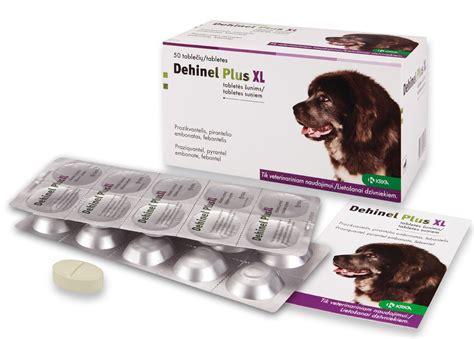 Dehinel Plus XL tabletes apaļtārpu invāziju ārstēšanai un ...