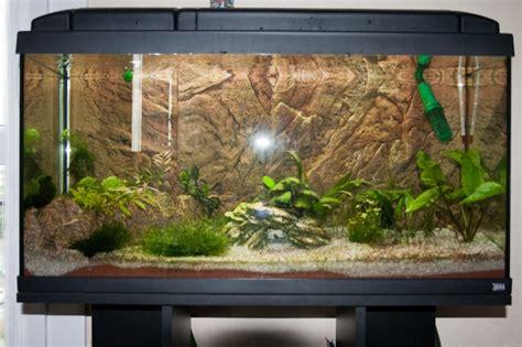 d 233 cor aquarium 100l