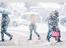 Il gelo siberiano d Buran sta per arrivare le previsioni