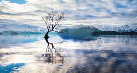 lake wanaka lake   zealand thousand wonders