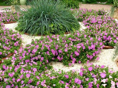 decoration parterre avec galets 1001 conseils et mod 232 les pour cr 233 er une parterre de fleurs