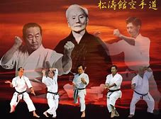 Image result for shotokan karate