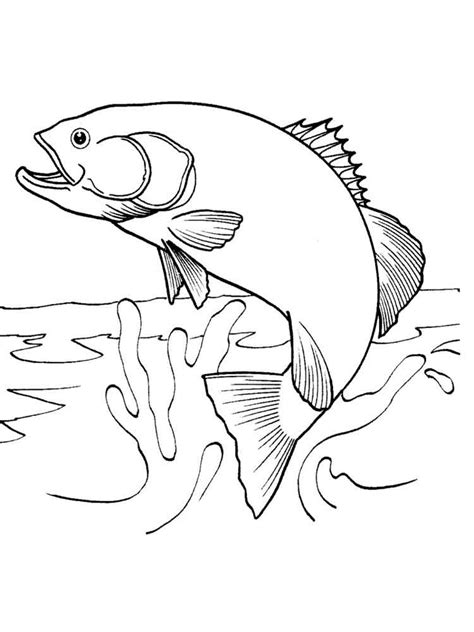 salmon coloring pages   print salmon coloring pages