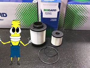 Premium Fuel Filter For Ford F