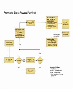 Free 7  Event Flow Chart Examples  U0026 Samples In Pdf