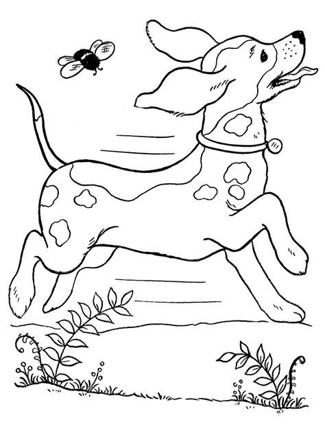 Een Kleurplaat Een Hond by Honden Kleurplaten Kleurplaat Hond
