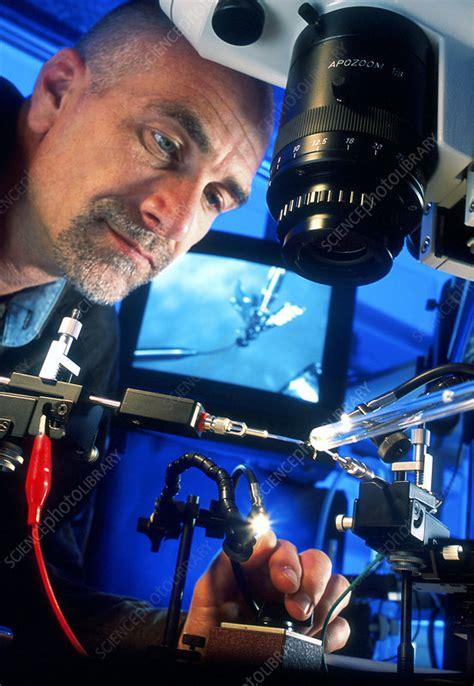 Biologist adjusting equipment - Stock Image - G350/0755 ...