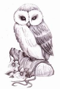 Image detail for -owl pencil sketch by natzs101 ...