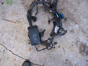 Purchase Used Wiring Harness Ford Ranger 2001 3 0 5 Speed In Orlando  Florida  United States