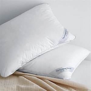 lacrosser loftaire pillow standard 2 pack offer the With company store pillows