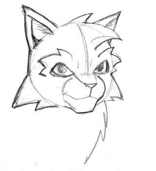 draw warrior cats step  step cartoon animals