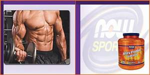 Now Foods Whey Protein Review